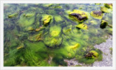 Фотография | Арт | Олег Гей | olegey.com  - 9