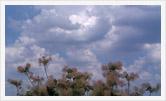 Фотография | Пейзаж | Олег Гей | olegey.com  - 78
