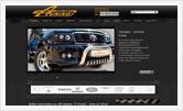 Веб дизайн, разработка сайтов | Олег Гей | olegey.com  - 18